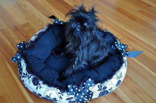 elegant dog beds